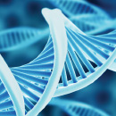 CRISPR-Cas9: Federal Circuit Says No Interference-in-Fact Between University of California and Broad Institute